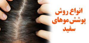 آموزش گرفتن سفیدی مو با ده نکته طلایی