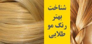 رنگ طلایی مو